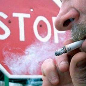 Петербург поддерживает табачный закон