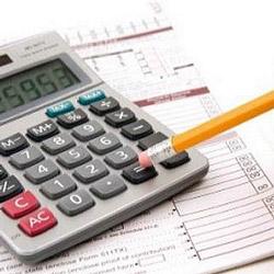 Новые декларации о доходах чиновников россияне смогут посмотреть не раньше середины июля 2013 года