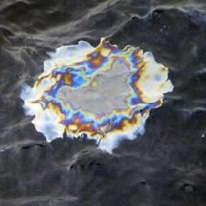 В Финском заливе обнаружено нефтяное пятно площадью 600 квадратных метров