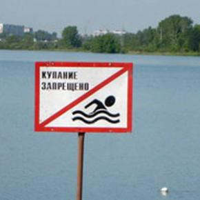 В одном из прудов Пушкина утонул мужчина - предположительно мигрант