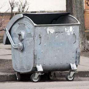 В Пушкине ищут женщину, выбросившую младенца в мусорный бак