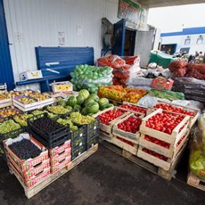 Полиция проводит обыски на Софийской овощебазе и еще по 12 адресам