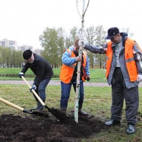 Весенний субботник - День благоустройства-2014 в Петербурге проведут 26 апреля