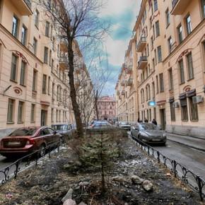 Улица или сквер Довлатова могут появиться в Петербурге