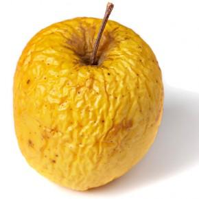 «Партия фрукта» за отмену «муниципального фильтра»