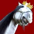 Лошадь в короне