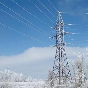 Из-за снегопада тысячи жителей Ленинградской области остались без электричества