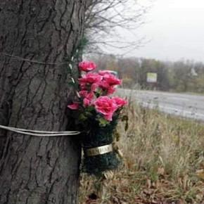 Петербург избавят от траурных венков в местах ДТП