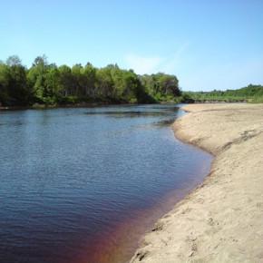 Водитель утонул в реке Оять вместе в машиной