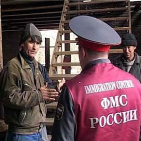 В Петербурге могут появиться миграционные патрули