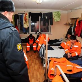 Под Гатчиной построят центр временного содержания мигрантов