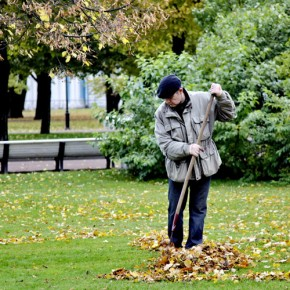 Очередной день благоустройства в Петербурге пройдет 19 октября 2013 года