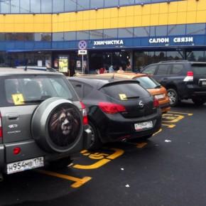 В Петербурге начали бороться за неприкосновенность мест парковки для инвалидов