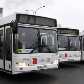 200 новых МАЗов пополнят автобусный парк Петербурга