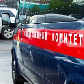 СК Петербурга проверит видео, где двое южан избили и унизили школьника