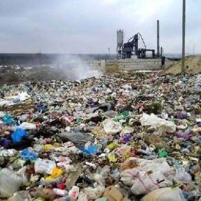 Завод по переработке мусора в Красном Бору запустят в течение двух лет