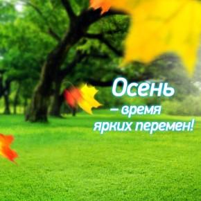 Пластика Окон объявляет осенние скидки на цветные окна
