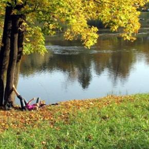 Вторая волна бабьего лета начнется в Петербурге на выходных