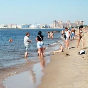 Петербуржцам пообещали, что в Финском заливе можно будет купаться