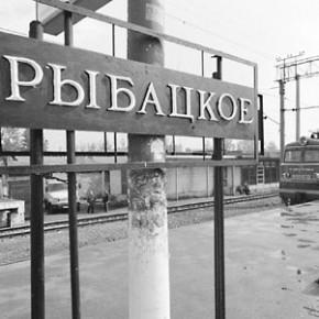 Раскрыто убийство мигранта в Рыбацком, произошедшее 4 ноября
