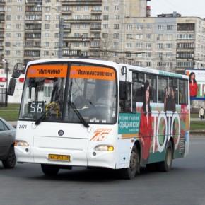 У метро Купчино маршрутка №56 сбила пешехода, пострадавшая скончалась в больнице