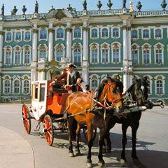 В центре Петербурга карета с лошадьми сбила пешехода